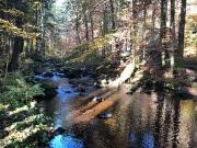 Herbstausflug Spiegelau